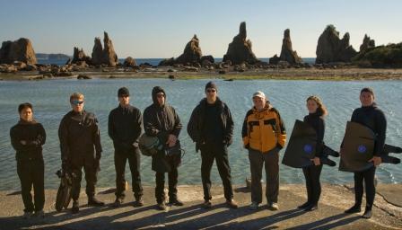 The Cove Team